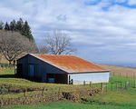 MF 473.  Barn atop the Amity Hills and above the Willamette Valley.  Yamhill County, OR