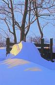 SF 2156.  A snowdrift at a wintry sunrise.  Cass County, Iowa