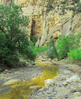 MF 232.  A nearly dry Escalante River marks the end of summer.  Escalante National Monument, UT