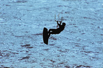 SF 2174.  Silhouetted kite boarder  soaring in the late afternoon light of Tomales Bay, CA