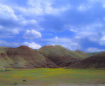 MF 65 PI.  Clouds drift across wildflowers at the Painted Hills.  John Day Fossil Beds National Monument, OR