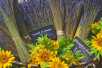 D800e 83.  A bouquet of lavender at the weekly farmer's market in St. Remy de Provence.  Provence, France.