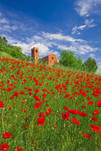 "D3X 34.  Red poppies surround the 10th century church and bell tower of ""Pieve Di San Giovanni Battista"" at Corazzano, Tuscany, Italy"