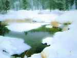 LF 205 PI.  A winter pond beneath the Elkhorn Range of the Blue Mountains, Wallowa-Whitman National Forest, OR