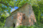 D3X 9 PI.  A derelict Tuscan farmhouse being consumed by forest and vegitation.  Tuscany, Italy