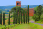 D3X 211 PI.  Cypress trees, vineyards, and a winding road lead to the 10th century church of Pieve Di San Giovanni Battista at mid spring.  Corazzano, Tuscany, Italy, Europe