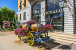 D810 43.   A floral decorated wagon in front of city hall and the premier hotel in Sisteron, Provence, Haute-de-Alpes, France