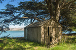 D810 45.  Laird's Landing and a studio of the artist Clayton Lewis.  Tomales Bay, Pt. Reyes National Park, CA