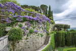 D800e 360.  La Foce gardens and wisteria at middle spring. Val d'Orcia, Tuscany, Italy