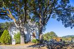 D850 7. Spring Valley Presbyterian Church and cemetery, circa 1859, in Zena. Willamette Valley, Polk County, OR