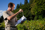 Oregon State University horticulture PhD student checks his raspberry research