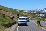 A crowd of tourists observes and photographs bull Elk along Trail Ridge Road.