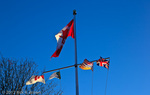flags flying over Stanley Park