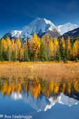 Autumn in Alaska.  Kenai Peninsula, Chugach National Forest.