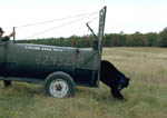 Releasing nuisance black bear from a live trap.