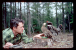 A male spruce grouse attempts to mount a stuffed female held by Dr. William Robinson. Female vocalizations are being played by a tape recorder in Robinson's right hand.