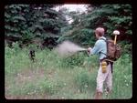 Using Pepper Spray on an Aggressive Black Bear.