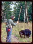 Hiker fending off a black bear with a Club.