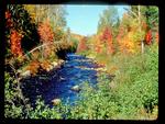 Fall Color along a River in Michigan's Upper Peninsula.