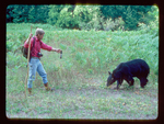 Hiker Preparing to use pepper spray on a black bear that has gotten too close.