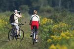 Birding by bike in late summer