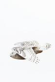 Snowy owl flight in late January