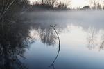 Big John's pond at Jamaica Bay in predawn fog