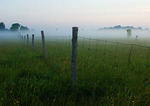 Grasslands And Fence Posts On A Misty Morning
