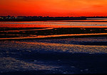 Jamaica Bay Mudflats and Bay With Brant In Red Afterglow