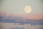 Full moon and pink clouds