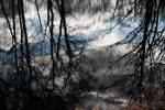 Kettle pond reflection abstract at dusk