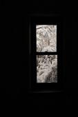 Winter window after last night's snow