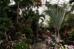 Planting fields arboretum greenhouse