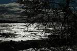Back-lit image of lake Simcoe