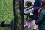 Children feeding squirrel
