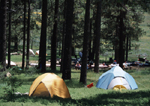Tents in campsite