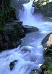 SILVER FALLS, OHANAPECOSH RIVER