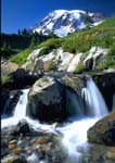 MOUNT RAINIER, Edith Creek Cascades above Myrtle Falls at Paradise Meadows.