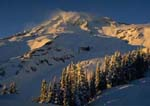 WINTER SUNSET ON MOUNT RAINIER, Deadhorse Creek Trail at Paradise.